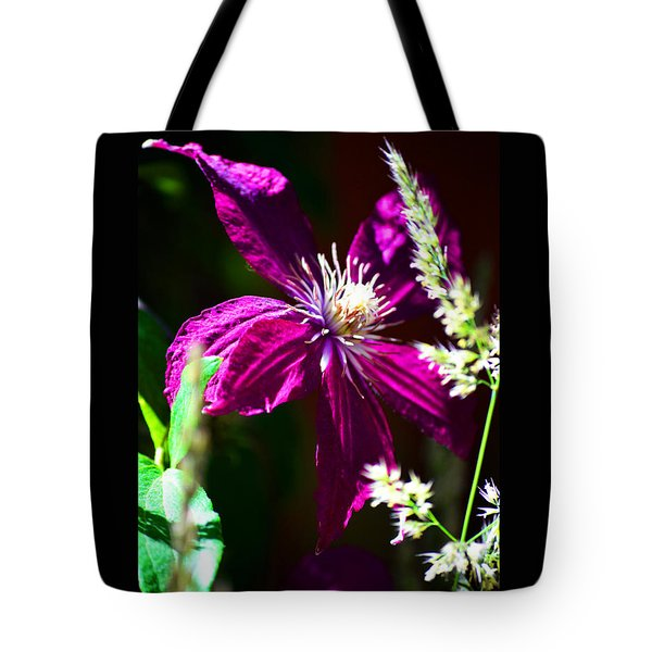 Tote Bag featuring the photograph Santa Fe Summer by Susanne Still
