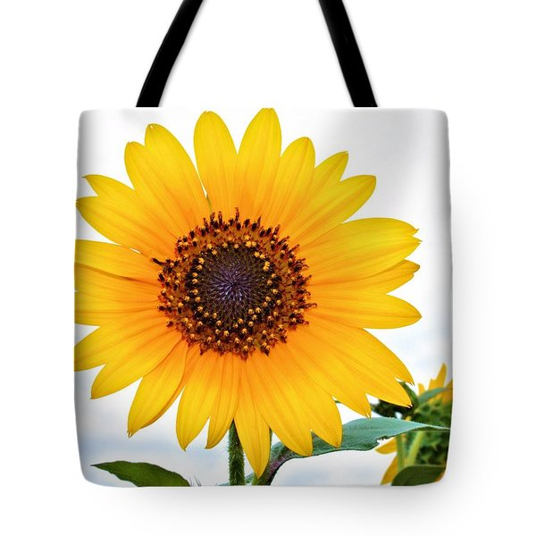 Sassy Sunflower Tote Bag by Elizabeth Budd