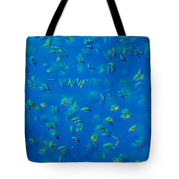 Scenedesmus Sp. Algae, Lm Tote Bag by M. I. Walker
