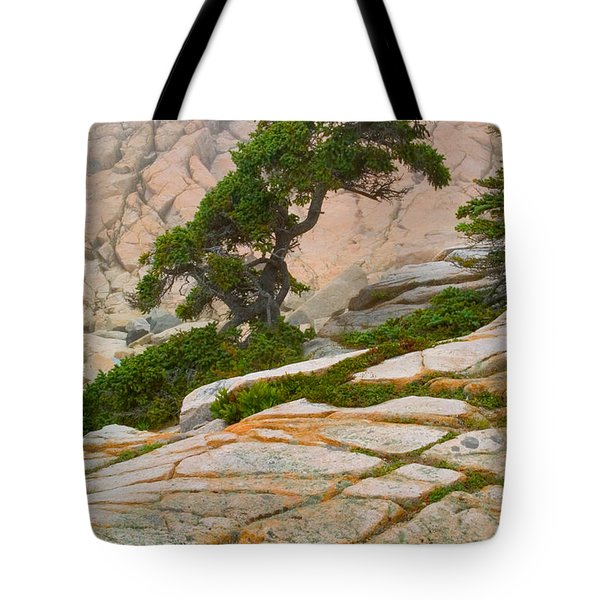Tote Bag featuring the photograph Schoodic Cliffs by Brent L Ander