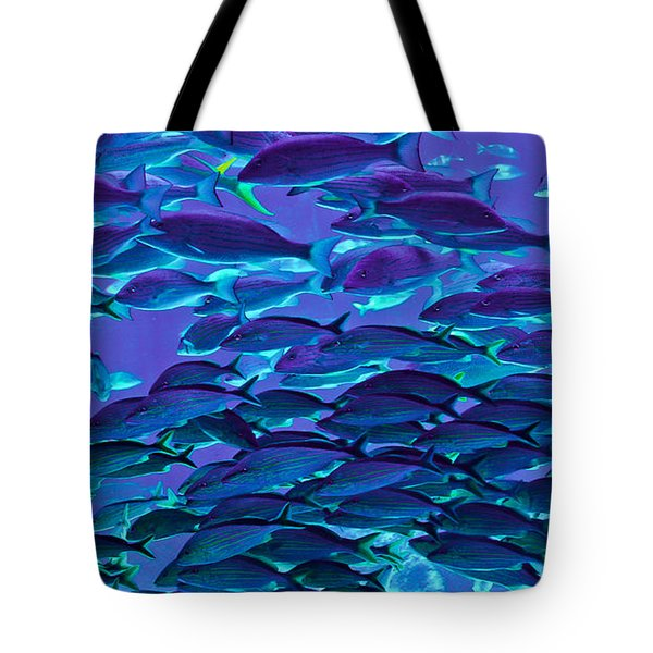 School Daze Tote Bag by DigiArt Diaries by Vicky B Fuller