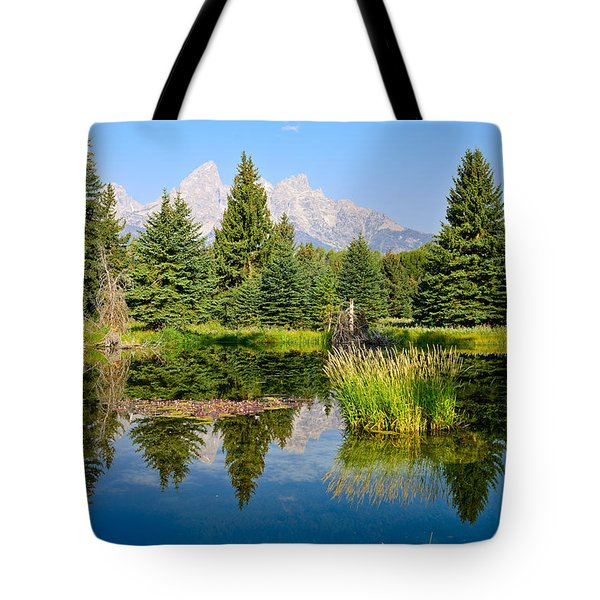 Schwabacher Reflections Tote Bag