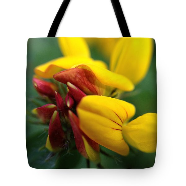 Scotch Broom Tote Bag