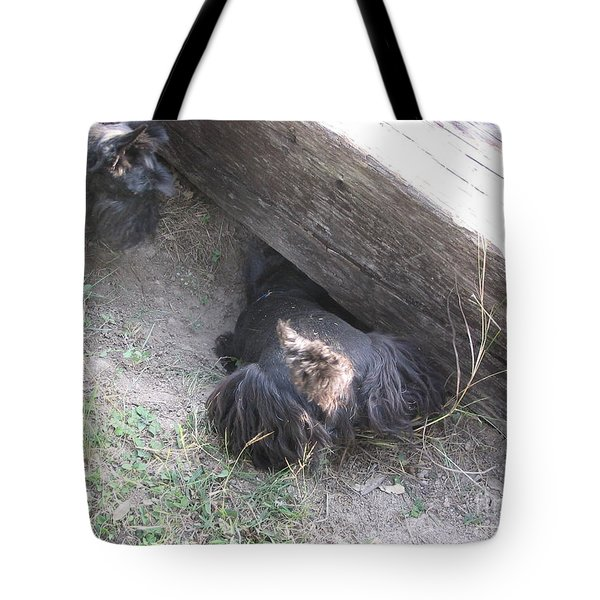 Scotty Armadillo Dance Tote Bag by Mark Robbins