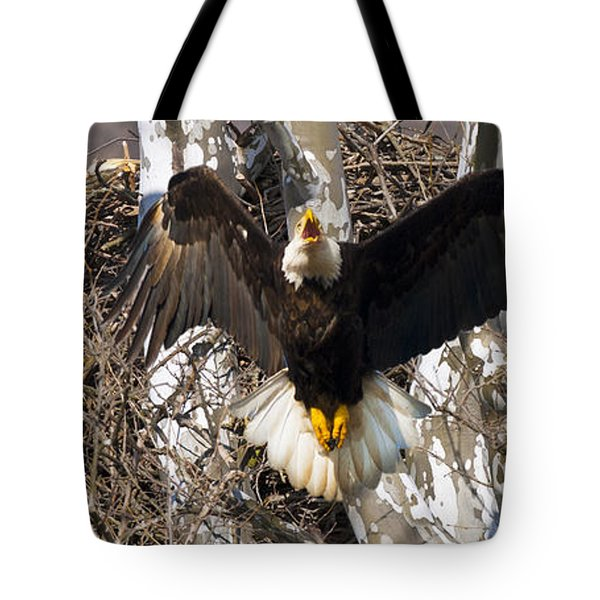 Tote Bag featuring the photograph Screaming Eagle  by Randall Branham
