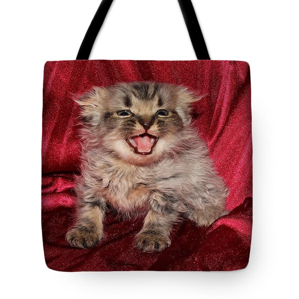 Scruffy Fold 2011 2 Tote Bag by Robert Morin