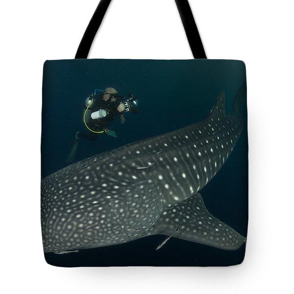 Scuba Diver And Whale Shark, Papua Tote Bag by Steve Jones