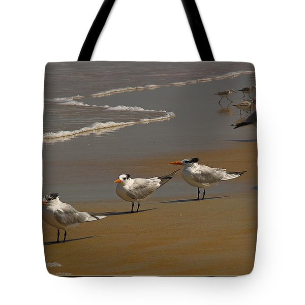 Sand And Sea Birds Tote Bag by Barbara Middleton