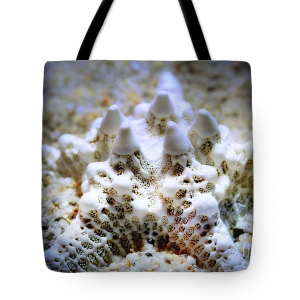 Sea Star Tote Bag by Judi Bagwell