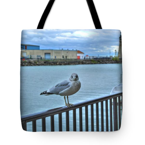 Tote Bag featuring the photograph Seagull At Lighthouse by Michael Frank Jr