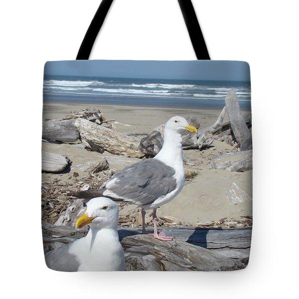 Seagull Bird Art Prints Coastal Beach Bandon Tote Bag by Baslee Troutman
