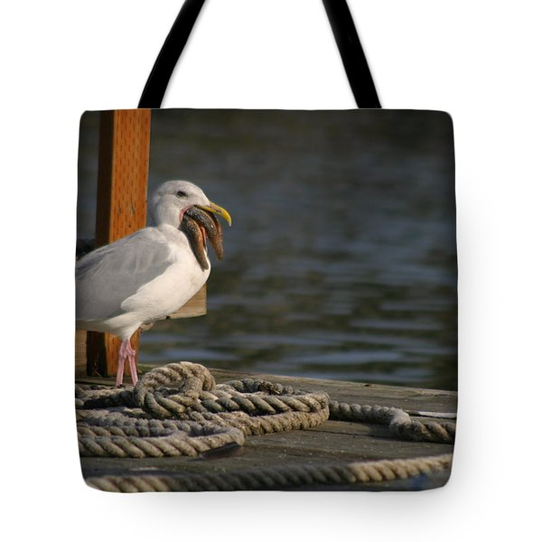 Seagull Swallows Starfish Tote Bag by Kym Backland