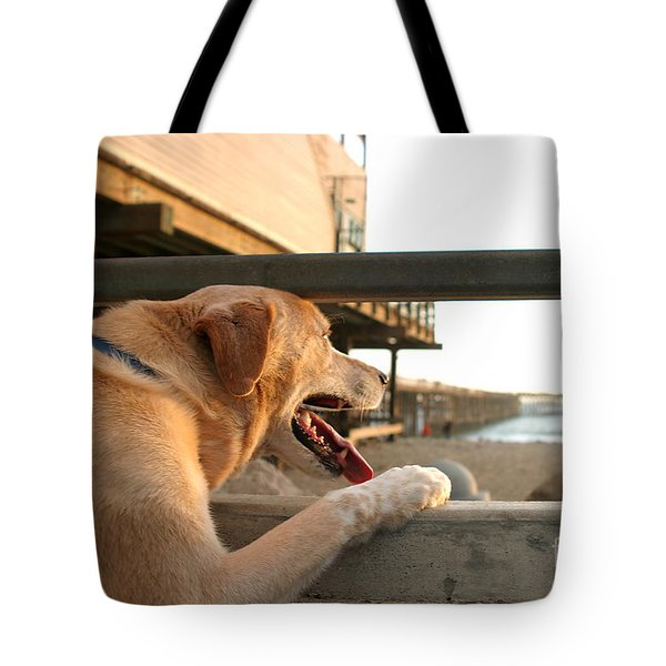 Searching The Ocean Tote Bag
