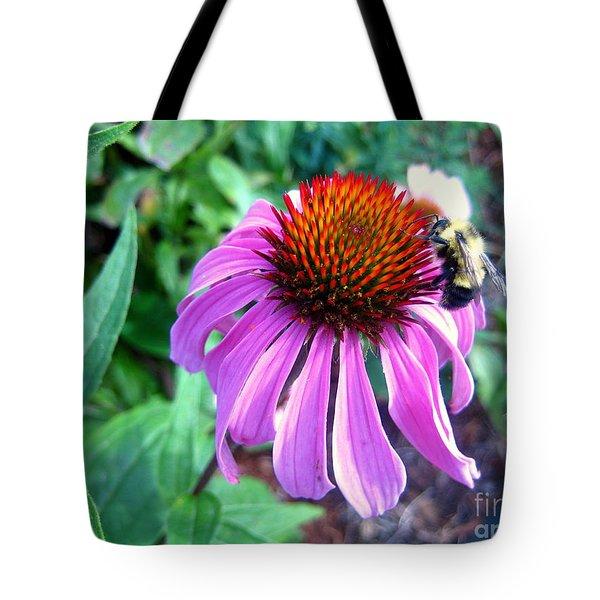 Season For Echinacea  Tote Bag by Kathy Bassett