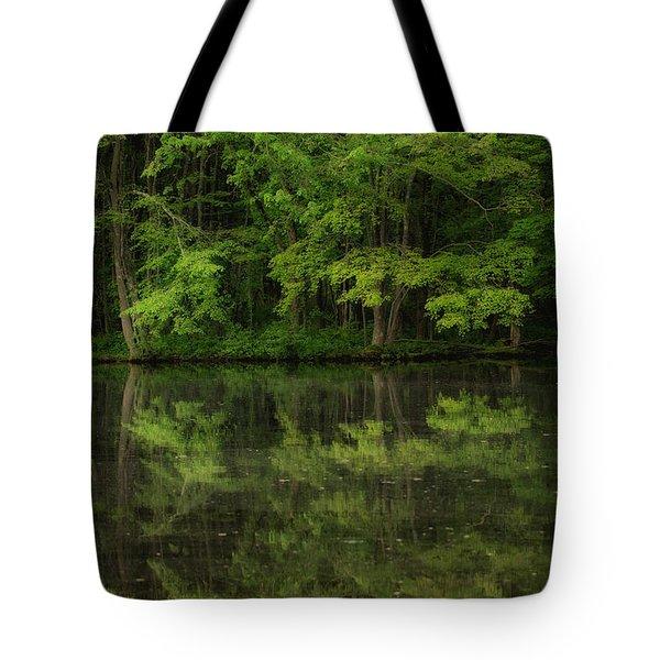 Season Of Green Tote Bag by Karol Livote