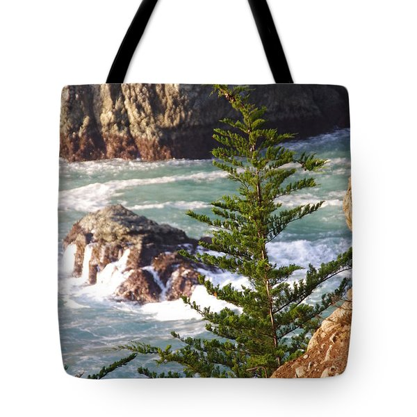 Secluded Big Sur Cove 2 Tote Bag by Jeff Lowe