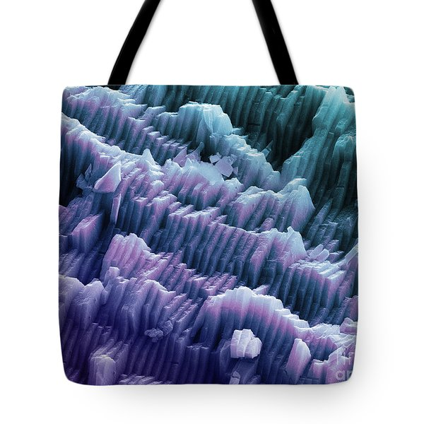 Sem Of A Blue Mussel Shell Tote Bag by Ted Kinsman