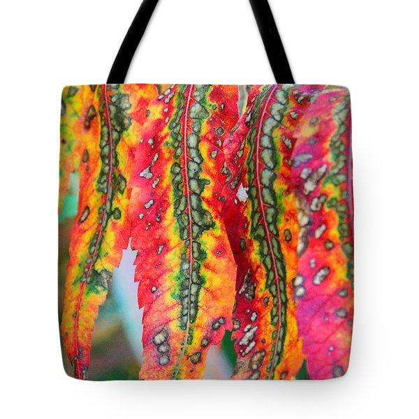Sensuous Sumac Tote Bag