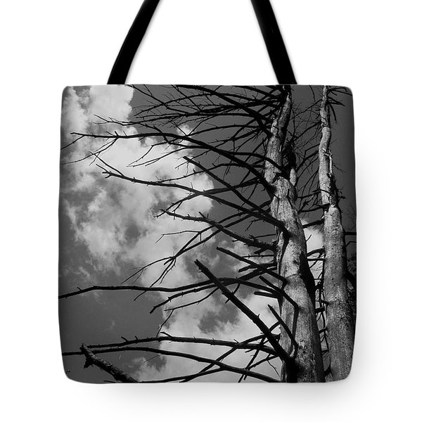 Sentry Tote Bag