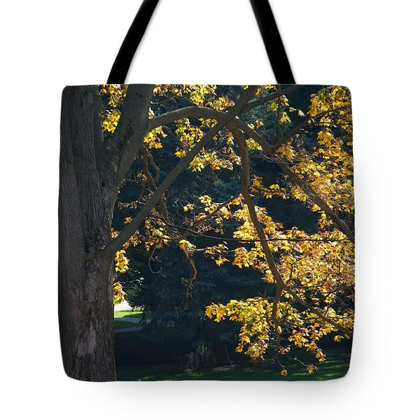 Tote Bag featuring the photograph September Dreams by Joseph Yarbrough