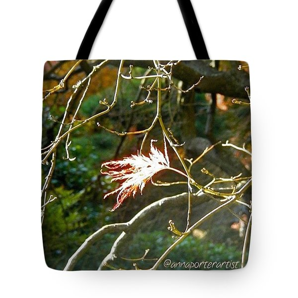 Solo One Shining Leaf Tote Bag