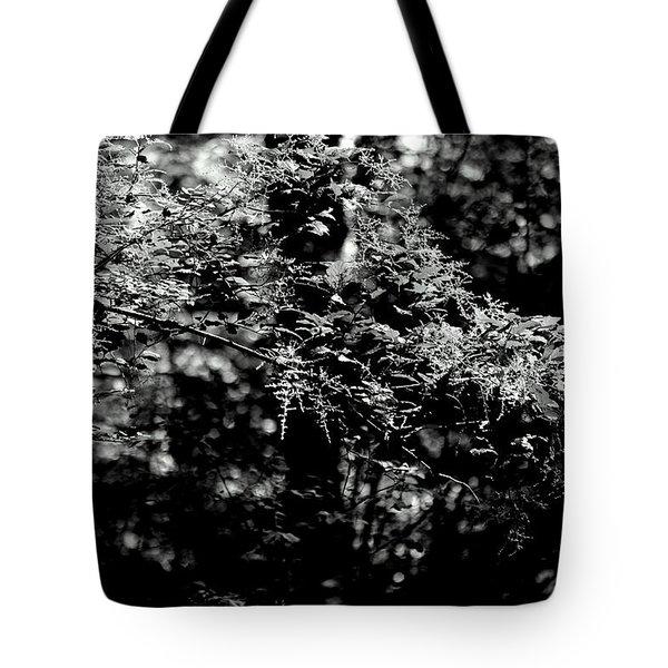 Serene Tote Bag by Jeanette C Landstrom