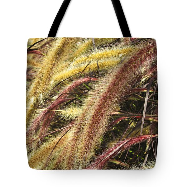 Setaria Italica Red Jewel - Red Bristle Grass Tote Bag by Anne Mott