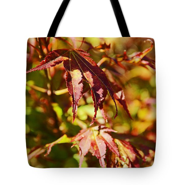 Tote Bag featuring the photograph Shades Of Autumn by Kerri Ligatich
