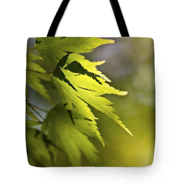 Shades Of Green And Gold. Tote Bag by Clare Bambers