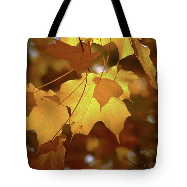 Shadow Dancing Leaves Tote Bag