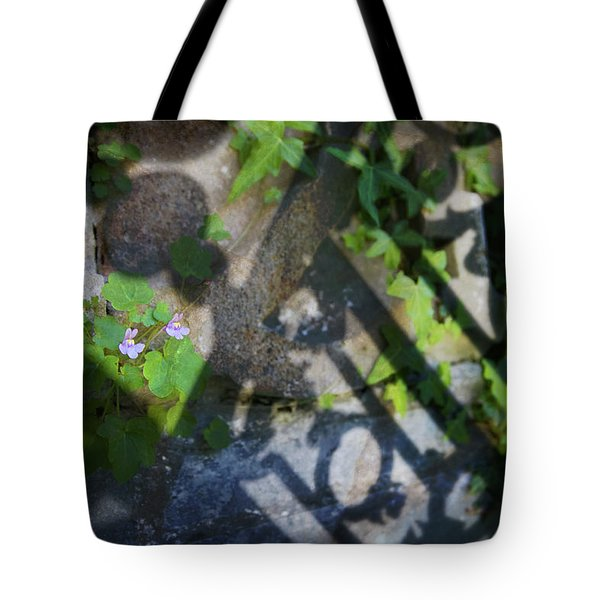 Tote Bag featuring the photograph Shadow Garden by Richard Piper