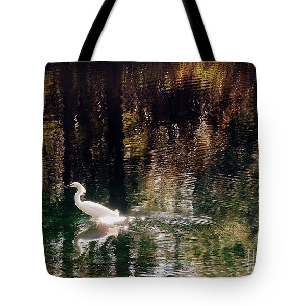 Tote Bag featuring the photograph Shadowwaters by Lydia Holly