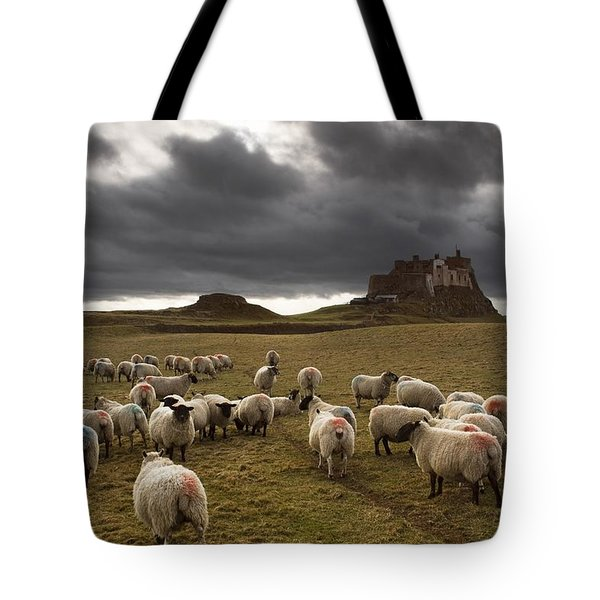 Sheep Grazing By Lindisfarne Castle Tote Bag by John Short