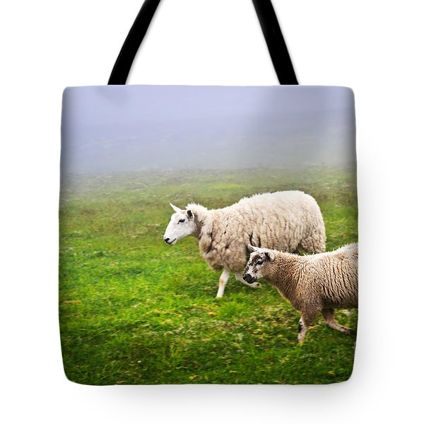 Sheep In Misty Meadow Tote Bag