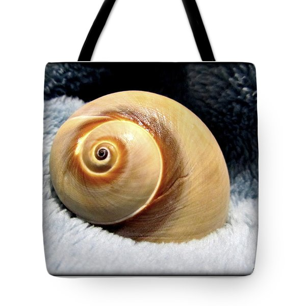 Tote Bag featuring the photograph Shell One by Danielle  Parent