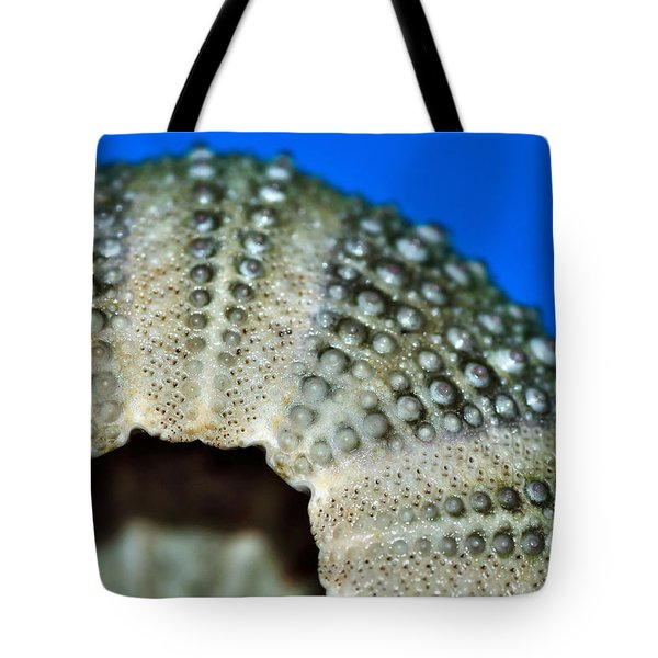 Shell With Pimples 2 Tote Bag by Kaye Menner