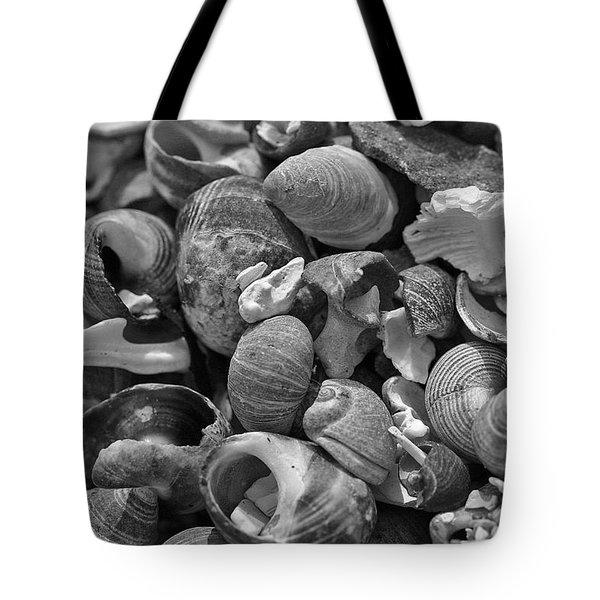 Shells V Tote Bag by David Rucker