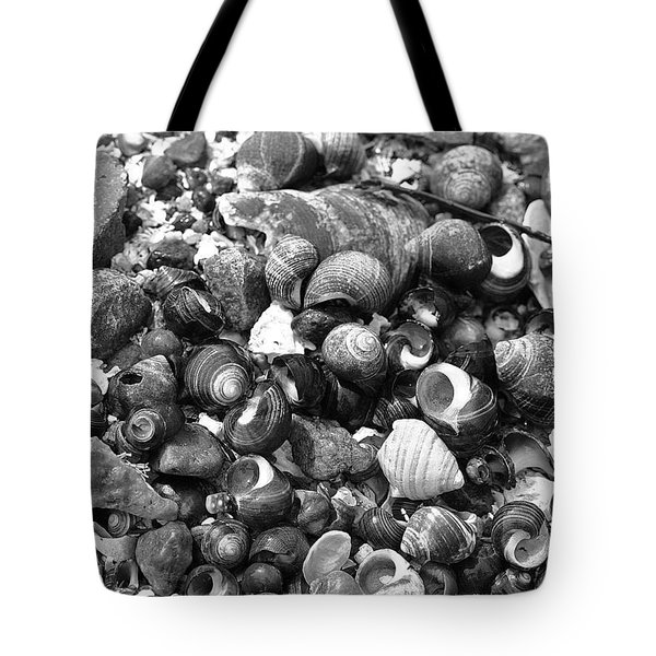 Shells Vii Tote Bag by David Rucker