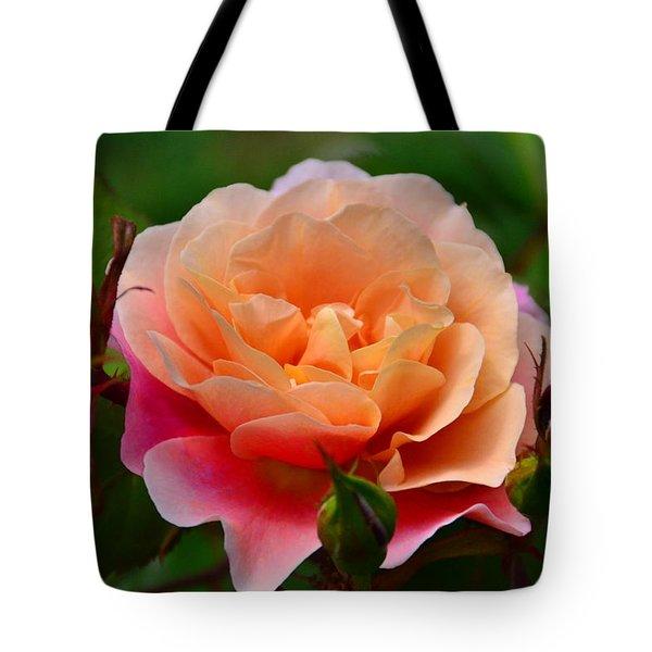 Sherbet Rose Tote Bag by Bonnie Myszka