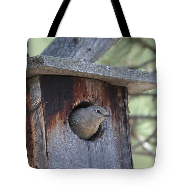She's Home Tote Bag