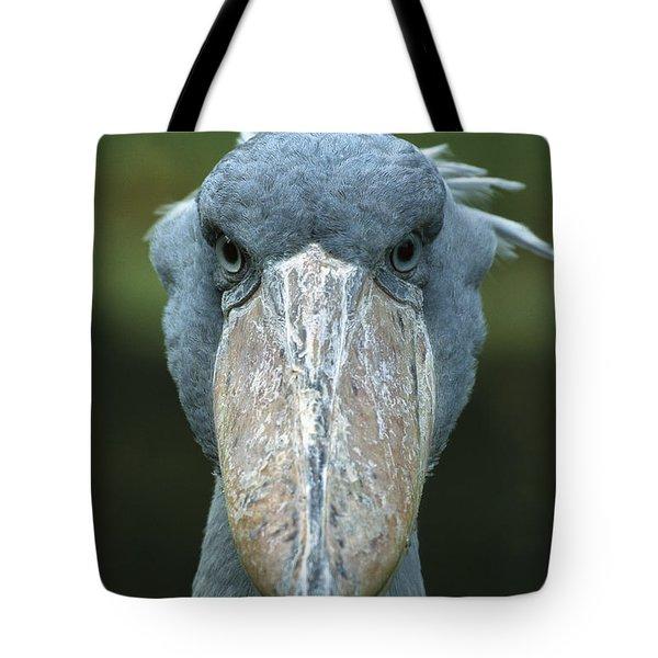 Shoebill Balaeniceps Rex Portrait Tote Bag