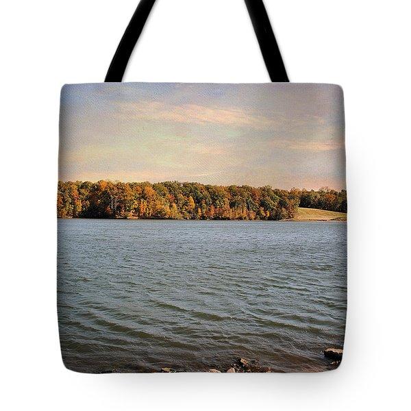 Shoreline Tote Bag by Jai Johnson