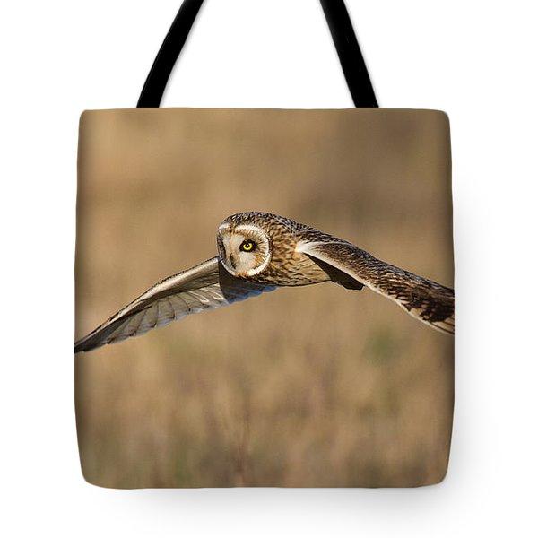 Short Eared Owl Hunting Tote Bag