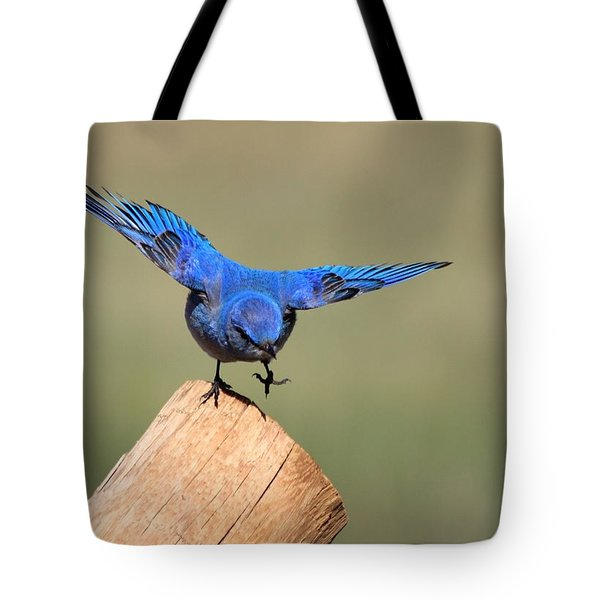 Showing Off Tote Bag by Shane Bechler