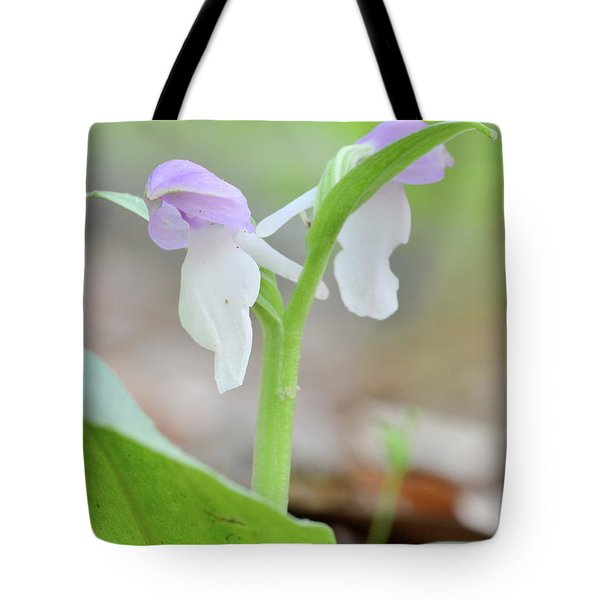 Showy Orchis Tote Bag