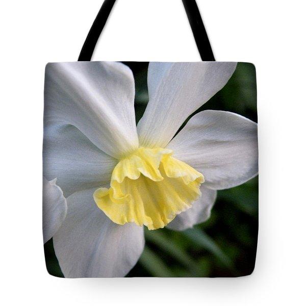 Shy Daffodil Tote Bag