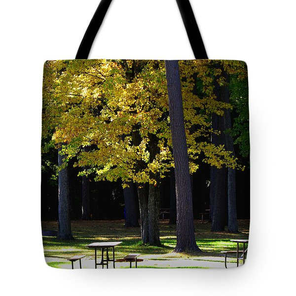 Silence In The Park Tote Bag by Ms Judi