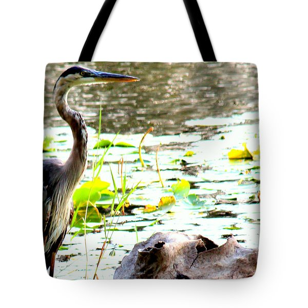 Tote Bag featuring the photograph Silent Solitude by Kathy  White