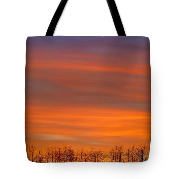 Silhouette Of Trees Against Sunset Tote Bag by Don Hammond