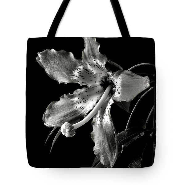 Silk Flower In Black And White Tote Bag